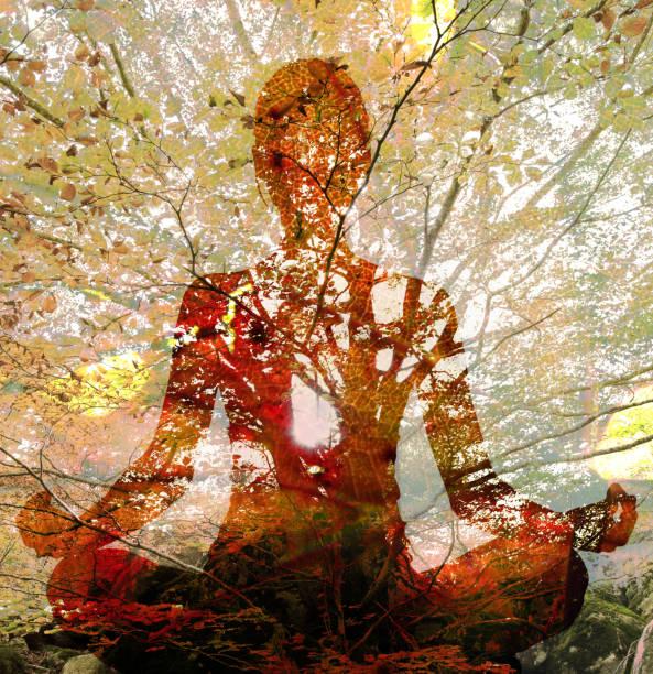 yoga liseleje